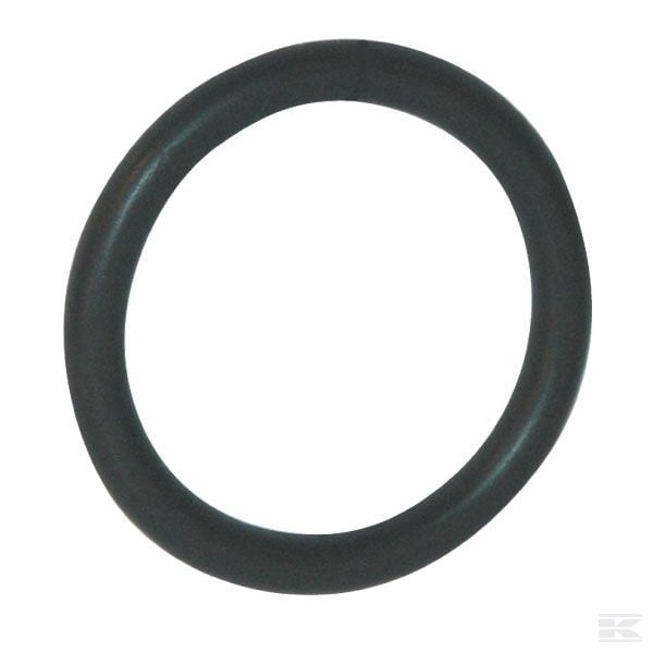 O Ring genuine 2